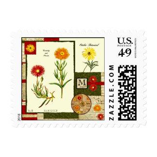 October's Stamp
