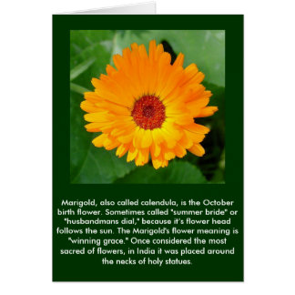 October's Summer Sunlit Marigold Card