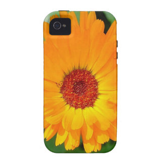 October's Summer Sunlit Marigold Vibe iPhone 4 Cases