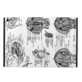 Octopus Anatomy Case iPad Air Cover