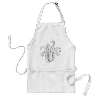 Octopus bimaculatus adult apron