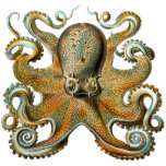 "Octopus Cutout Magnet/Sculpture<br><div class=""desc"">An octopus has eight arms, which trail behind it as it swims. Most octopuses have no internal or external skeleton, allowing them to squeeze through tight places. An octopus has a hard beak, with its mouth at the center point of the arms. Octopuses are highly intelligent, probably the most intelligent...</div>"