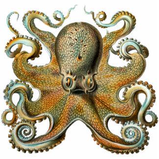 Octopus Cutout Magnet/Sculpture