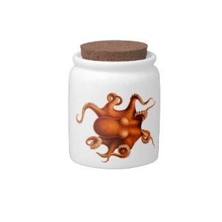 Octopus Illustration Candy Jars