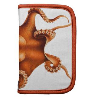 Octopus Illustration Organizers