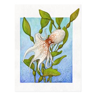 Octopus in Kelp Forest Postcard