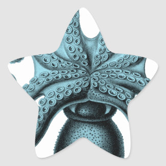 Octopus in Teal Star Sticker