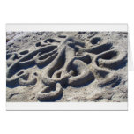 Octopus in the Sand Greeting Cards