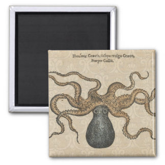 Octopus Kraken vintage scientific illustration Magnet
