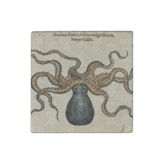 Octopus Kraken vintage scientific illustration Stone Magnet