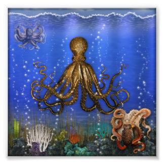 Octopus' Lair - Colorful Photo Print