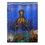 Octopus' Lair - Colorful Post Card