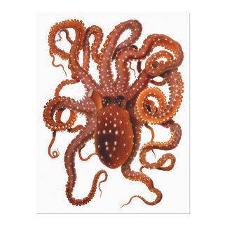 Octopus Macropus Atlantic White Spotted Octopus Canvas Print