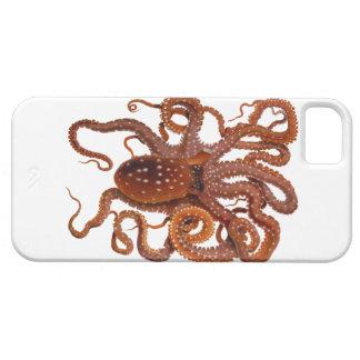 Octopus Macropus Atlantic White Spotted Octopus iPhone SE/5/5s Case