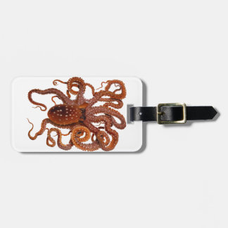 Octopus Macropus Atlantic White Spotted Octopus Tags For Bags