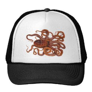 Octopus Macropus Atlantic White Spotted Octopus Trucker Hat
