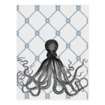 Octopus  - Nautical Post Card