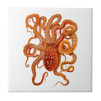 Octopus No.6 Cephalopod Sea Creature Art Ceramic Tile