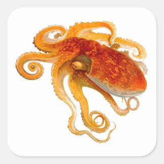 Octopus No 8 Cephalopod Sea Creature Art Square Stickers