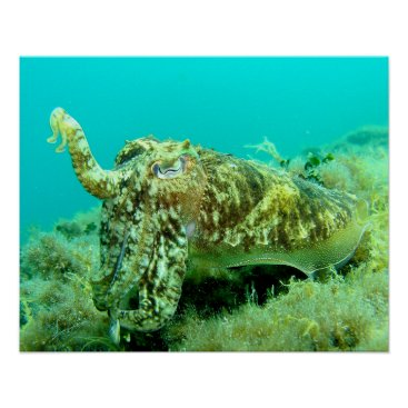 Art Themed Octopus Poster