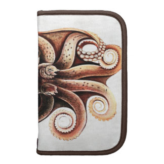 Octopus Rickshaw Folio Organizers