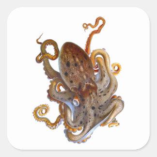 Octopus Sea Creature Cephalopod Sticker