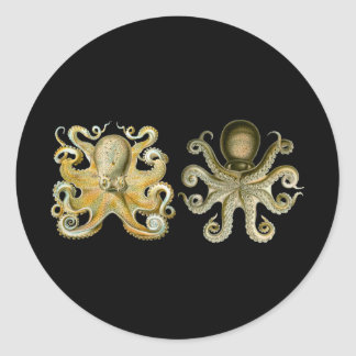 Octopus Round Stickers