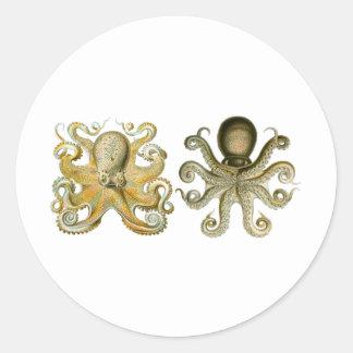 Octopus Classic Round Sticker