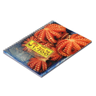Octopus | Tako たこ Tsukiji Fish Market Notebook