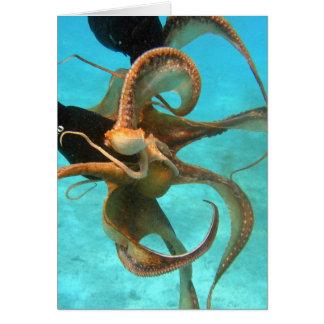 Octopus underwater card