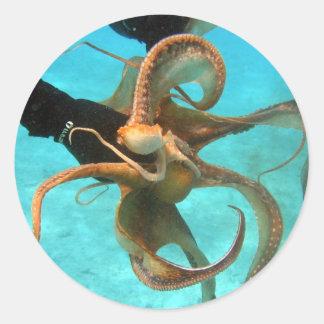 Octopus underwater classic round sticker