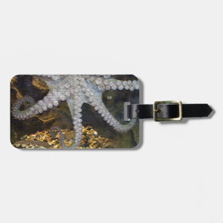 Octopus with Exposed Suction Cup Tentacles Bag Tags