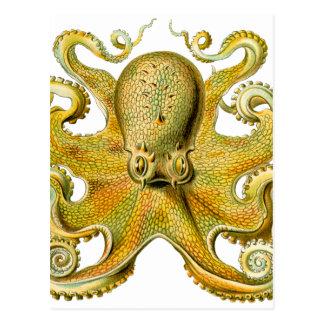 Octopus Yellow Postcard