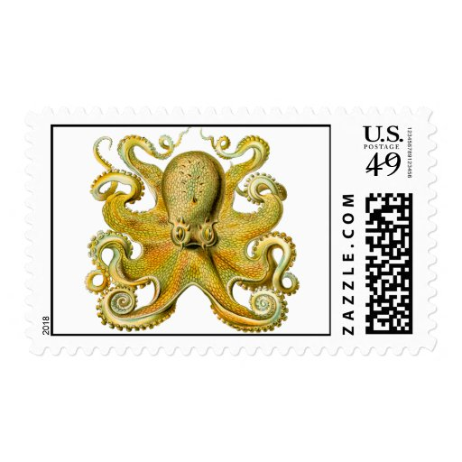Octopus Yellow Stamp