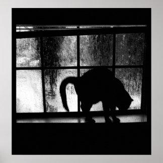 Octubre riega la silueta del gato en la ventana 2  impresiones