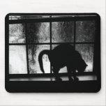 Octubre riega la silueta del gato en la ventana 2  tapete de ratones