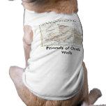 octwell_map, amigos de los pozos del Ocotillo Camisetas De Perro