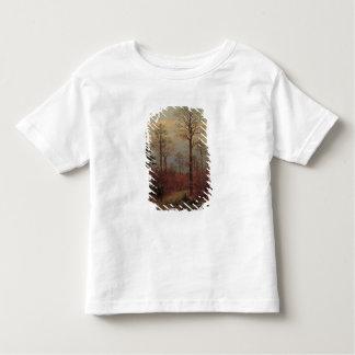 Oculi, 1894 toddler t-shirt