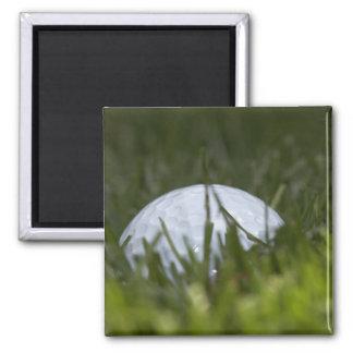 ocultación de la pelota de golf imán para frigorífico