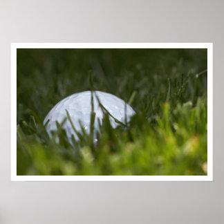 ocultación de la pelota de golf póster