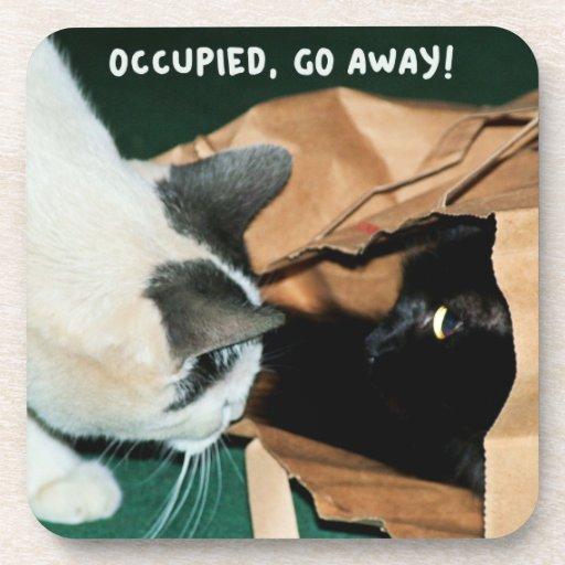 ¡Ocupado, salga! Gatos divertidos Posavaso