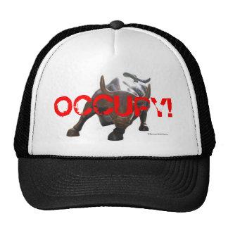 Ocupe el gorra 2 de Wall Street Bull