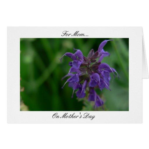 Oda a la mamá (flor violeta) tarjeta