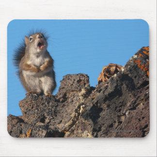 Oda a mi cono del pino alfombrillas de raton