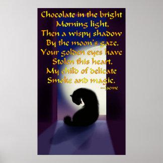 Oda a un gato negro póster