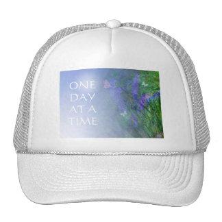 ODAT Butterflies & Vetch Trucker Hat