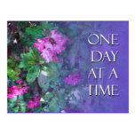 ODAT Rhododendrons Post Cards