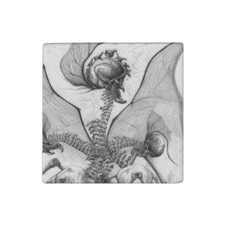 Odd Bone Fellow Horror Monster Art Stone Magnet