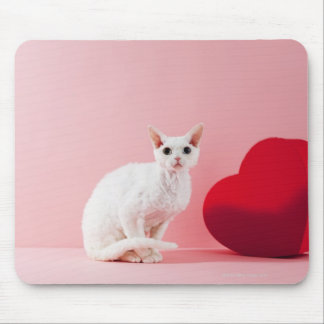 Odd-eyed cat mouse pads