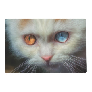 Odd-Eyed Persian Kitten Placemat